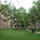 Grass lawn on Lincoln Park campus of DePaul University